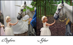 Image Background Removal, Background Removal Services, Background removal, Image Background Removal India